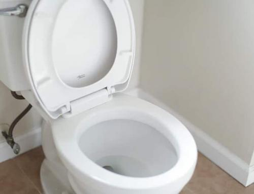When to Call a Plumber for a Toilet Flush System Repair?